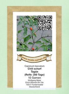 Tepin-chili-très Aiguisé - 10 Graines-afficher Le Titre D'origine Faire Sentir à La Facilité Et éNergique