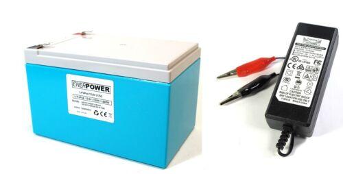 ENERPOWER LiFePo 4 12v 12,8v 12ah SOSTITUISCE PIOMBO BATTERIA 12v batterie caricatore 2a