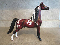 Custom Painted Peter Stone Morgan Bay Paint / Pinto Horse Traditional OOAK