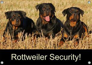Panneau d'avertissement Panneau métallique Rottweiler - qualité 1a particulièrement résistante