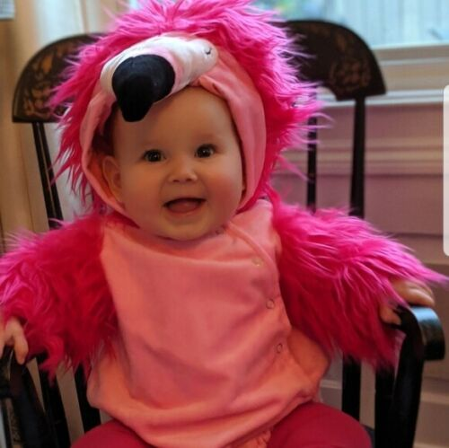 NWT POTTERY BARN BABY INFANT PINK FLAMINGO COSTUME SIZE 0-6 MONTHS
