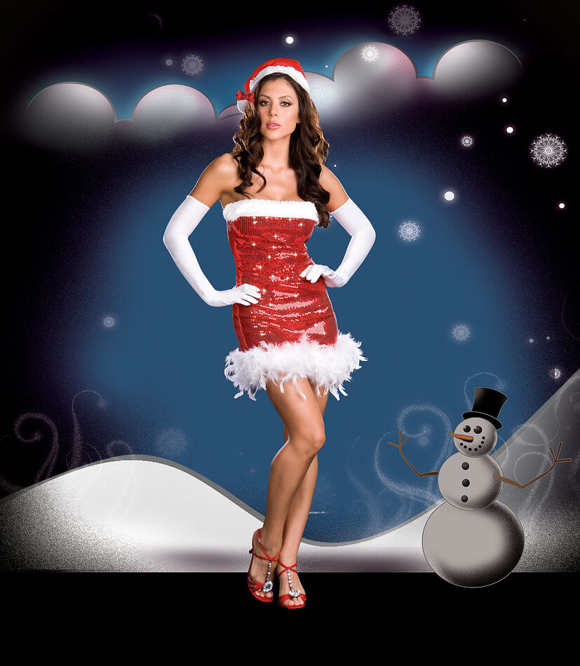 Sexy Halloween Holiday Christmas Santa's Darling Sequin Costume w Hat