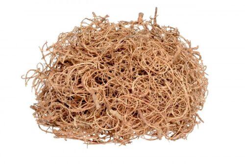 NaDeco® Curly Moos natur 500gCurlymoosTillandsia MoosDeko MoosBastel