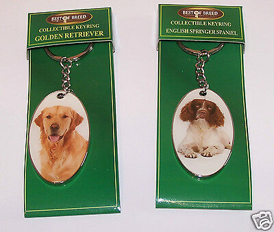 Dog Keyring English Springer Spaniel or Golden Retriever Best of Breed Fob