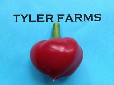 15+ Hot Red Cherry Bomb Pepper seeds (chili, chile)