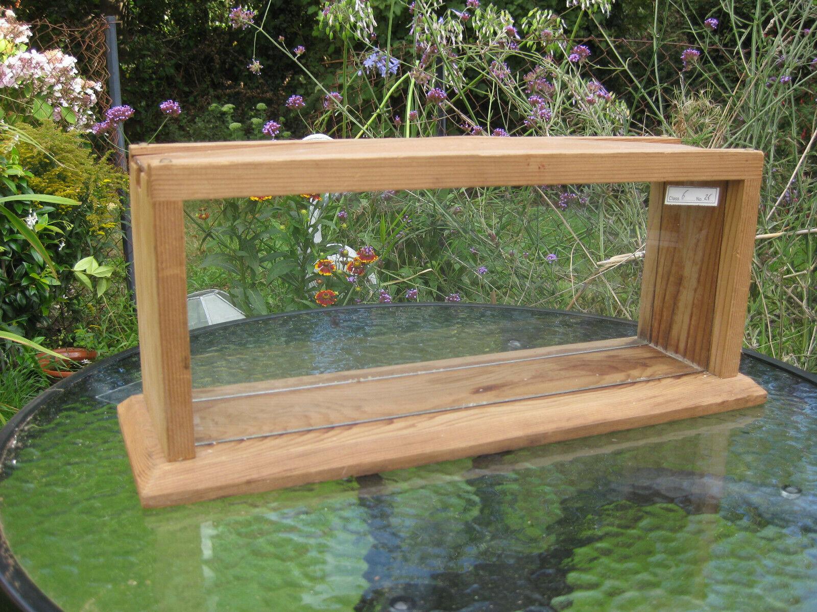 BEL legno di Ciliegio Apicoltura vetro a nido d'apeosservazione visualizzazione infisso