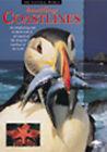 Bustling Coastline by Barbara Taylor (Paperback, 2000)