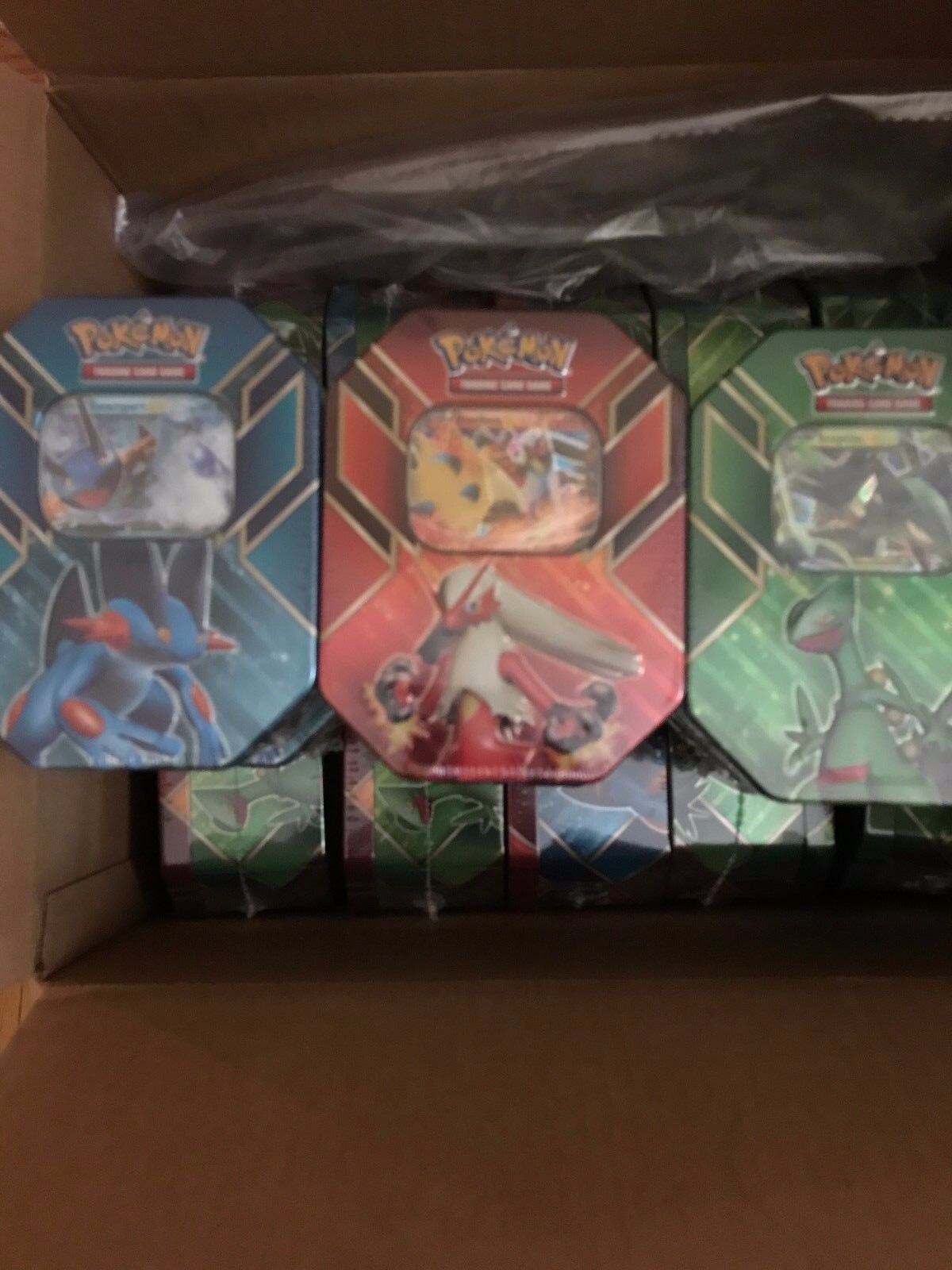 Pokemon TCG Hoenn Power Swampert + Sceptile + Blaziken EX Trading Card Tin Box
