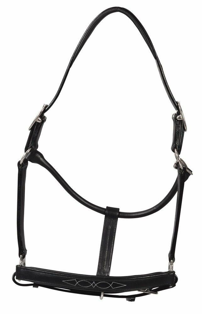 Henri de Rivel Fancy Padded Rolled Throat Triple Stitched Leather Halter
