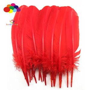 10-100pcs-pure-rouge-10-12-in-Turquie-plume-plumes-pour-fashion-Decorations