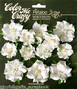Mini-Wild-Rose-WHITE-Green-Leaves-12-Paper-Flowers-3-amp-4cm-across-CMC-Petaloo