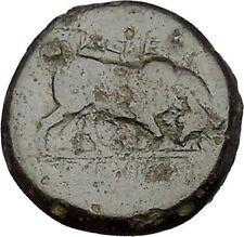 SELEUKOS I Nikator 312BC Seleukid Kingdom Medusa Bull Ancient Greek Coin i51987