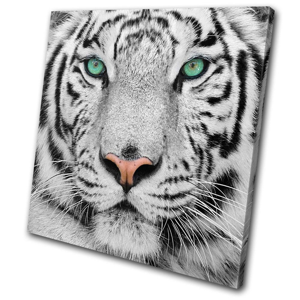 Animals Siberian Tiger Eye SINGLE SINGLE SINGLE LONA pa rojo  arte Foto impresion fc1e37