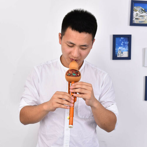 profeesional chinese hulusi gourd cucurbit flute c key ethnic instrument WQ