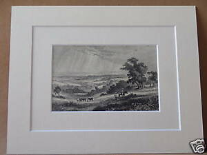 WEALD-OF-SUSSEX-ANTIQUE-MOUNTED-ENGRAVING-c1890-10X8