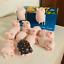 Toyzeroplus Cici/'s Story Lulu Piggy Lite Art Designer Toy Figurine Display Gift