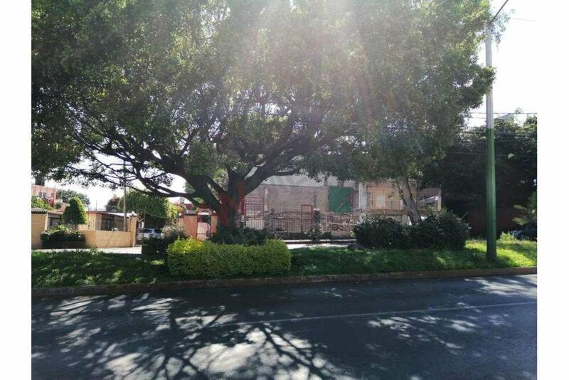 Terreno en renta sobre avenida Domingo Diez