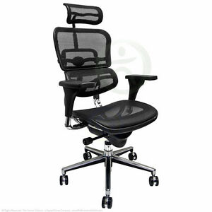 New Black Mesh Office Chair Raynor Ergohuman Ebay