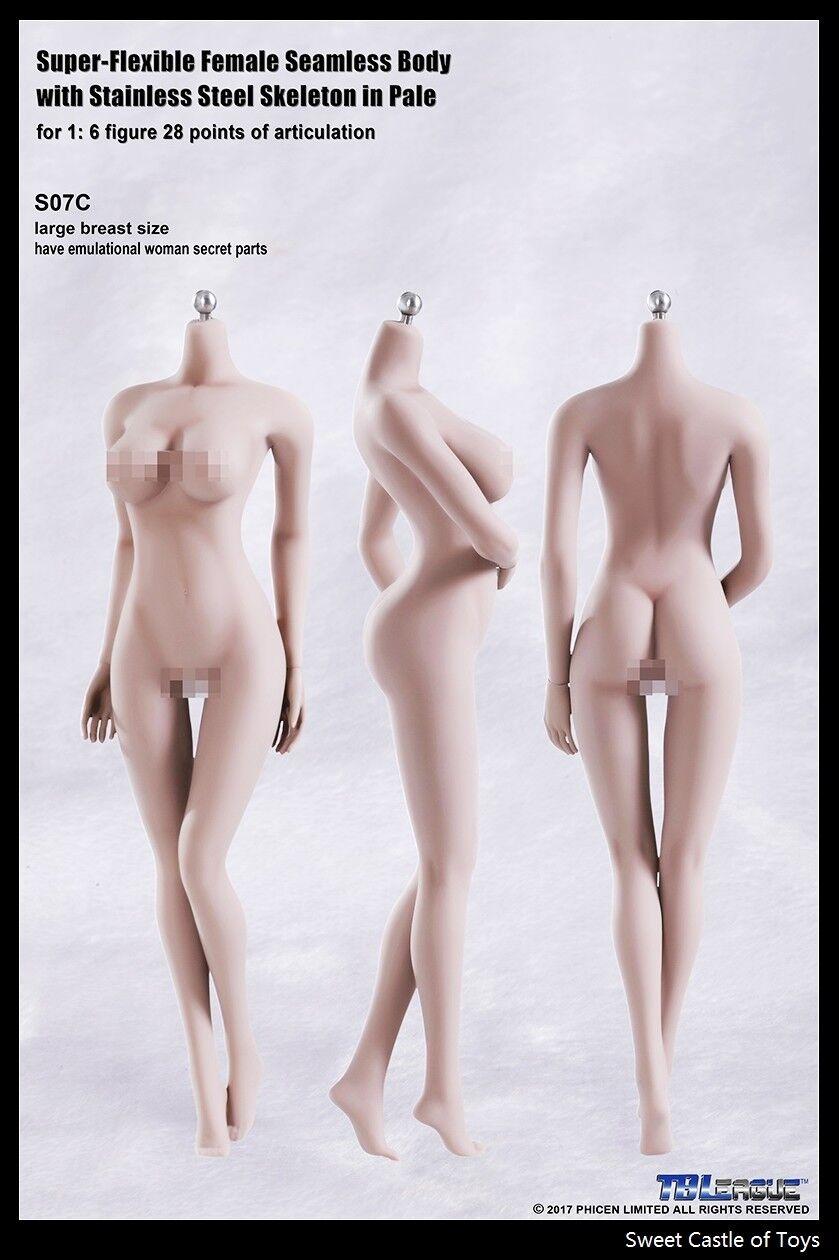 1/6 tbleague weiblich nahtlos Körper Blass GROß BÜSTE s07c W / Steel Skelett