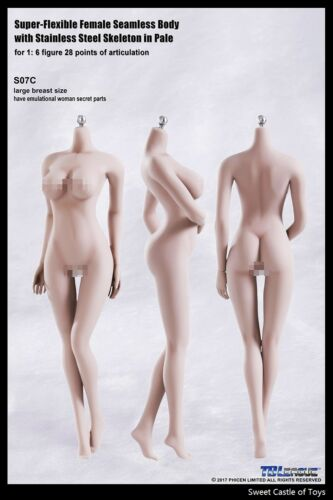 1//6 TBLeague Female Seamless Body Pale Large Bust S07C w//Steel Skeleton Phicen