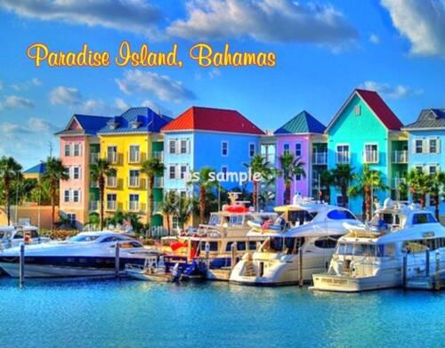 PARADISE ISLAND #3 Fridge Magnet Bahamas