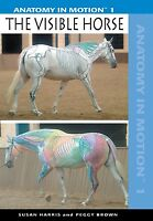 Anatomy In Motion 1 - The Visible Horse Dvd - Horse Training