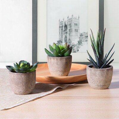 3pcs Artificial Succulent Pot Mini Fake Plants In Pot Plastic Landscape Decor AU