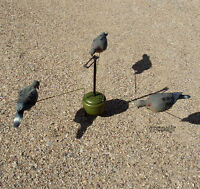 Lucky Duck Triple Play Dove Motion Motorized Decoy Device Pigeon