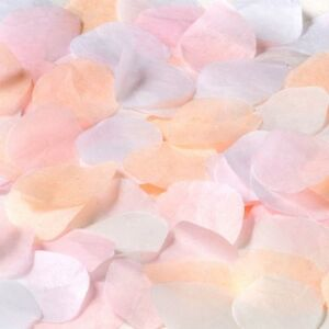 Shaped Rose Petals Wedding Throwing Confetti Tissue Paper 1-24pk