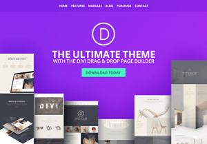 Details about Divi Theme | Divi Builder for WordPress | Elegant Themes |  Lifetime updates