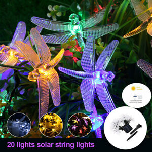 Solar-Powered-LED-String-Light-Garden-Path-Yard-Decor-Lamp-Outdoor-Waterproof-US