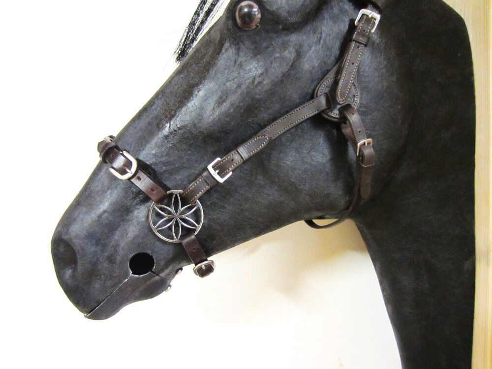 PS Blaumenzaum - Lilie Pony Pony Pony - Gebisslose Zäumung d17bcc