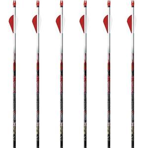 """New Easton Injextion Arrows 1 dz w// 2/"""" Blazer Vanes"""