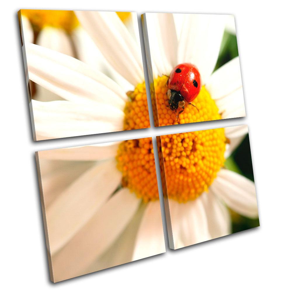 Daisy Ladybird Floral Foto MULTI LONA pa rojo  arte Foto Floral impresion 694d92