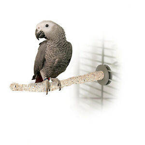 Parrot Perch Pet Bird Perch Sanded Thermal Heated Cage Grooming Perch