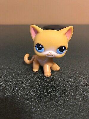 Littlest Pet Shop 71 Orange Standing Cat Blue Eyes