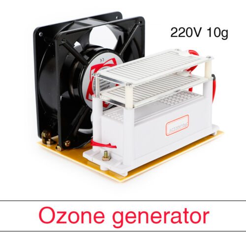10G générateur d/'ozone Purificateur d/'air en céramique désinfection à l/'ozone