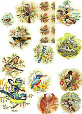 Coffee Kaffe Rustic Scenes Select-A-Size Waterslide Ceramic Decals Bx
