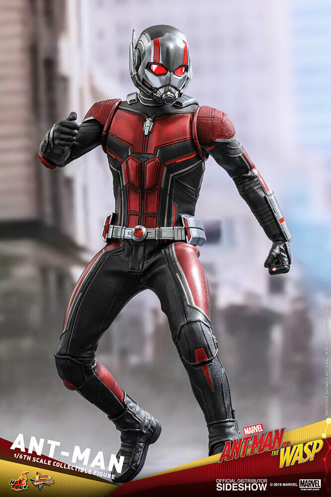 HOT TOYS Ant Man Sixth Scale Figure NEW IN BOX on eBay thumbnail
