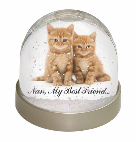 Kittens /'Nan My Best Friend/' Photo Snow Globe Waterball Stocking Fille AC-151GL