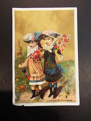"""fleurs De Printemps"" French Victorian Trade Card Shrink-Proof"