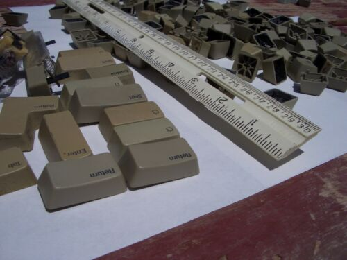 "/& s//h APPLE  IIe ////e  /""HIGH DEMAND/""  KEYCAPS $2.00 each"
