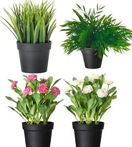 FEJKA Artificial Potted Plants,Ever Green Indoor Plant,House Bamboo ...