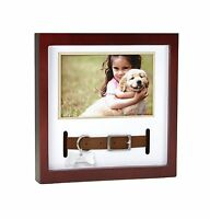 Pearhead Dog Or Cat Pet Collar Keepsake Frame Espresso Free Shipping