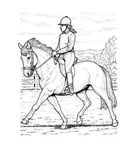 """malbuch * 32 malvorlagen """" pferde """" ausmalbilder als pdf"""