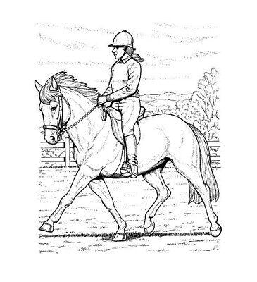 Malbuch 32 Malvorlagen Pferde Ausmalbilder Als Pdf Kinder Malen Ebay