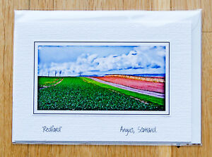 039-Redford-039-Angus-Scotland-Original-Photo-card-notelet
