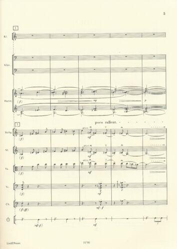 Süden Die Stücke der Windrose für Salonorchester Kagel