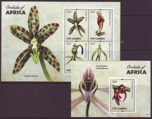 GAMBIA 2011 ORCHIDS OF AFRICA SHEETLET 4 + MINISHEET Part 1 MINT NEVERHINGED