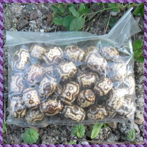 18x24mm 100 Perles bois 2 Lots acheter le 3éme Offert //